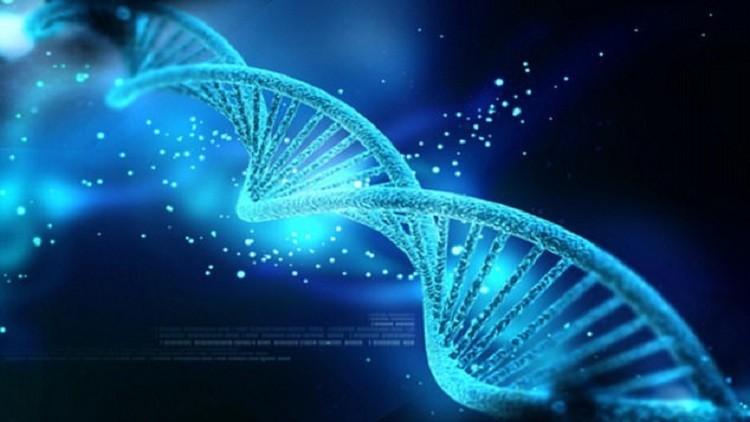 العلماء يكتشفون دواء جديدا لـحياة أبدية