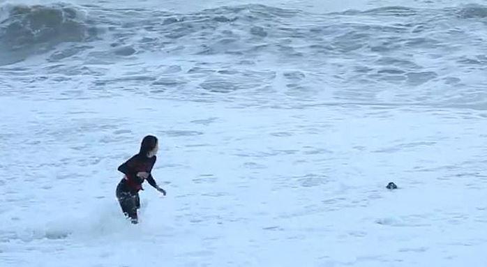 امراة تخاطر بحياتها لإنقاذ كلبها من الأمواج العالية