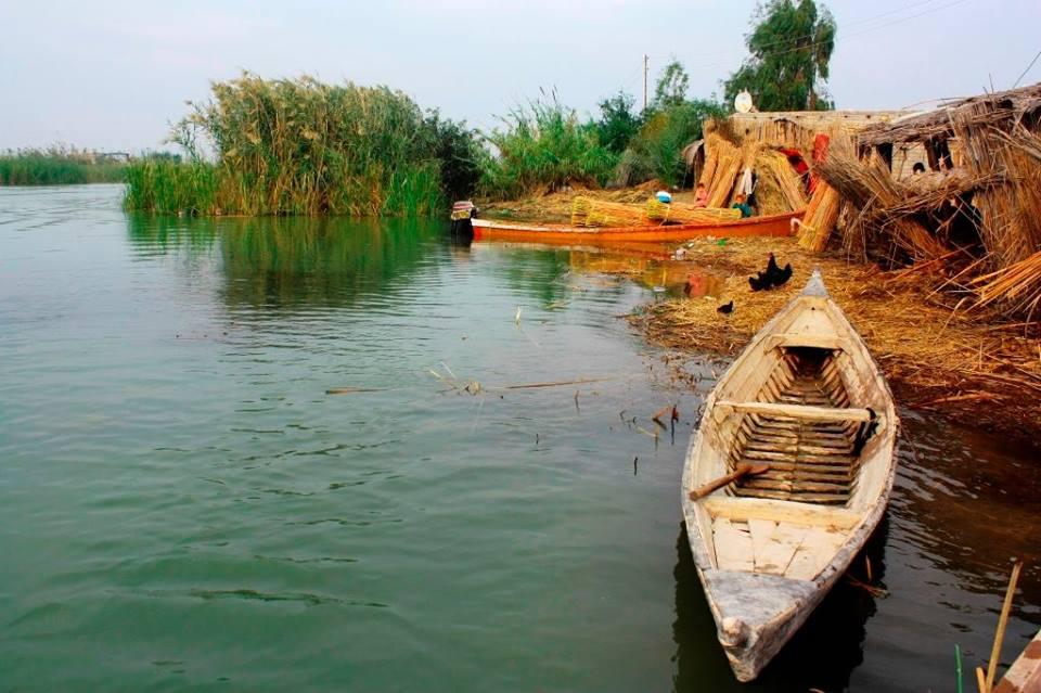 الموارد المائية تعلن المباشرة بنصب محطات لتحلية آبار الاهوار