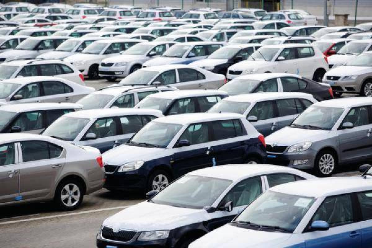قرار حكومي مهم يخص إستيراد السيارات