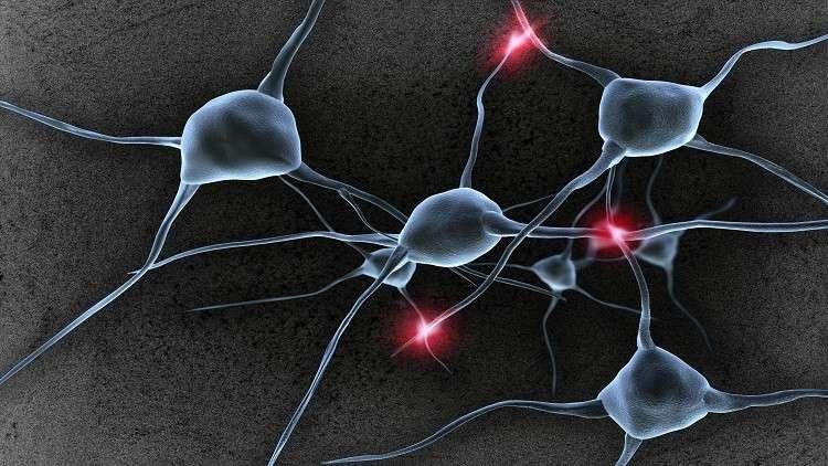 علماء يحولون الدم إلى خلايا عصبية!