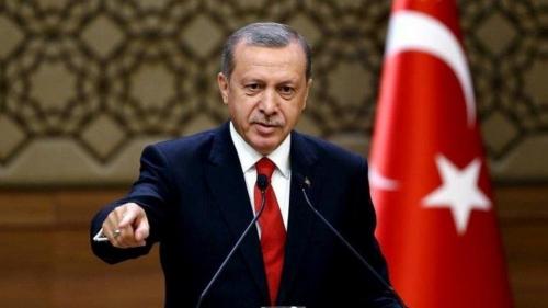 الرئيس التركي: سندخل سنجار ونقوم بما يلزم