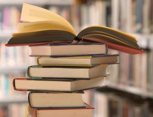 الكمارك تنفي حجز 13 حاوية للكتب في أم قصر
