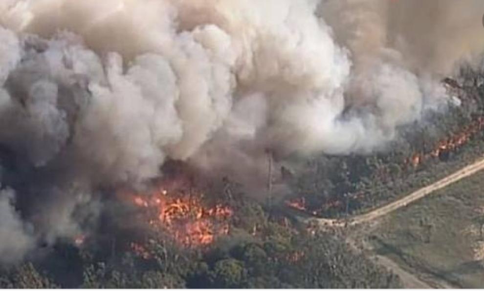 الحرائق تجتاح ولاية نيوساوث ويلز في استراليا