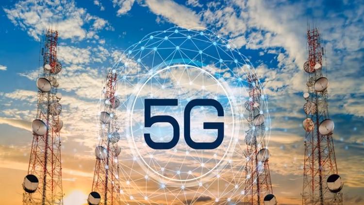 هل تسبب تفعيل شبكة 5G في نفوق مئات الطيور؟