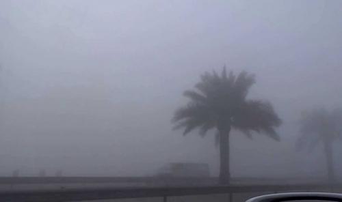 ضباب كثيف وأمطار متفاوتة في طقس اليوم