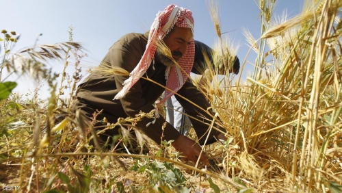 اعفاء الفلاحين والمزارعين من بدلات الايجار السنوي لعامي ٢٠١٨ -٢٠١٩