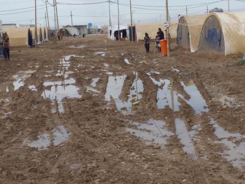 نائب عن نينوى: سكان مخيمات النزوح من ذوي منتسبي الأمن المفصولين