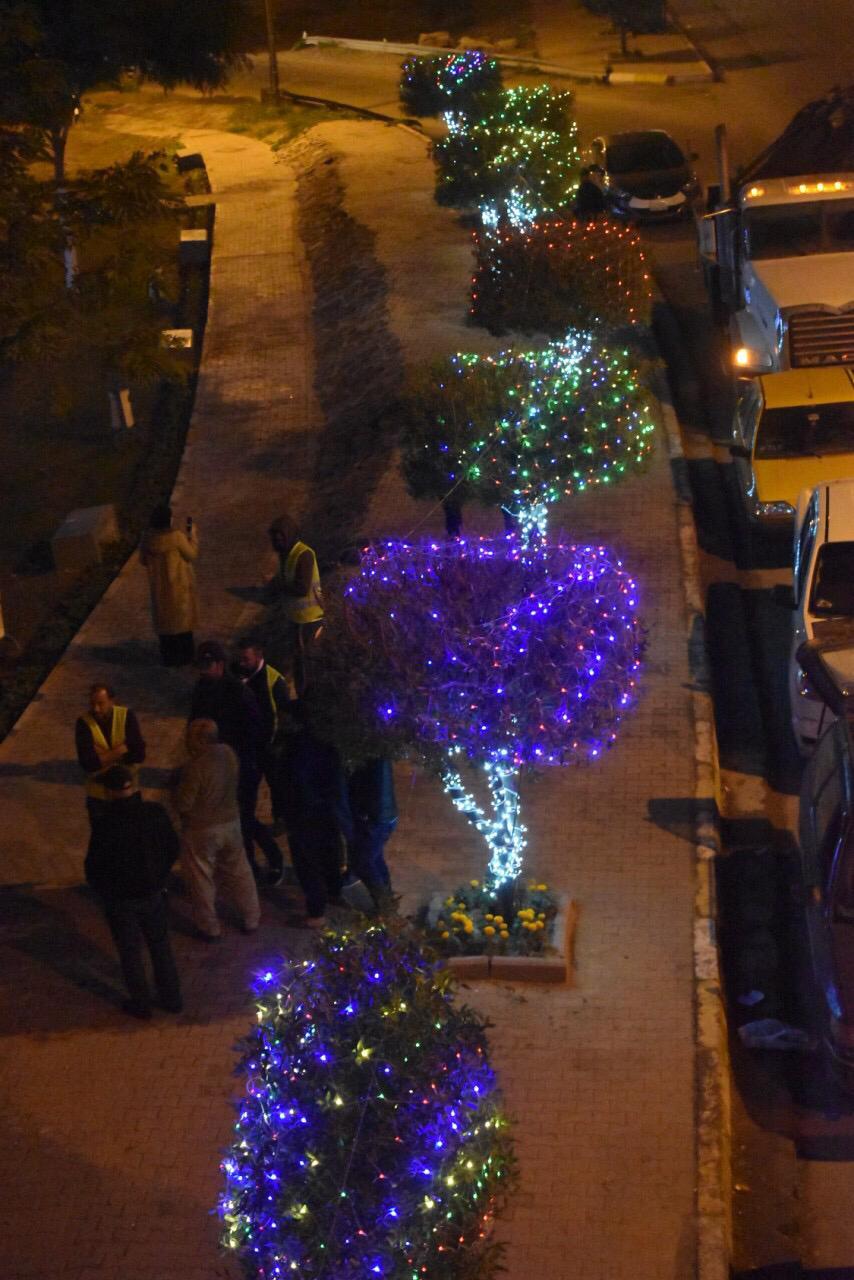 بغداد تتزين بأشجار الميلاد