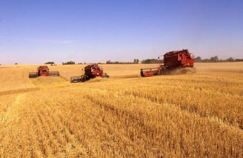 العراق يوقع إتفاقاً مع امريكا لإستيراد حنطة وأرز