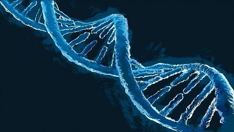 """جينات """"سحرية"""" قد تمكّن الإنسان من تجديد نفسه!"""