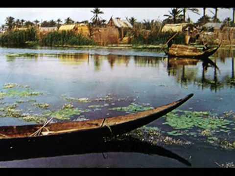 لجنة انعاش الاهوار : المياه غمرت محمية الصافية للمرة الأولى منذ 11 عاماً