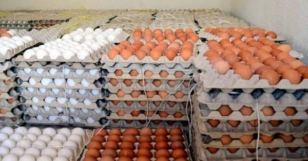ضبط شاحنة بيض مع أموال مهربة في منفذ مندلي ومطار النجف