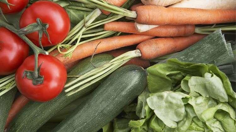 النظام الغذائي النباتي يفيد في علاج السكري