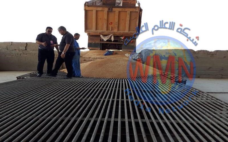 وزارة الزراعة: امكانية تحقيق الاكتفاء الذاتي من الحنطة والشعير خلال الموسم الحالي