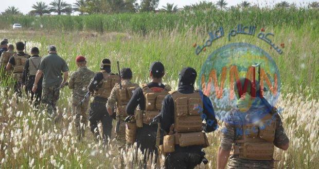 الحشد الشعبي في ديالى ينتشر في مناطق قريبة من حقول الحنطة لمنع اي حريق متعمد مقبل.