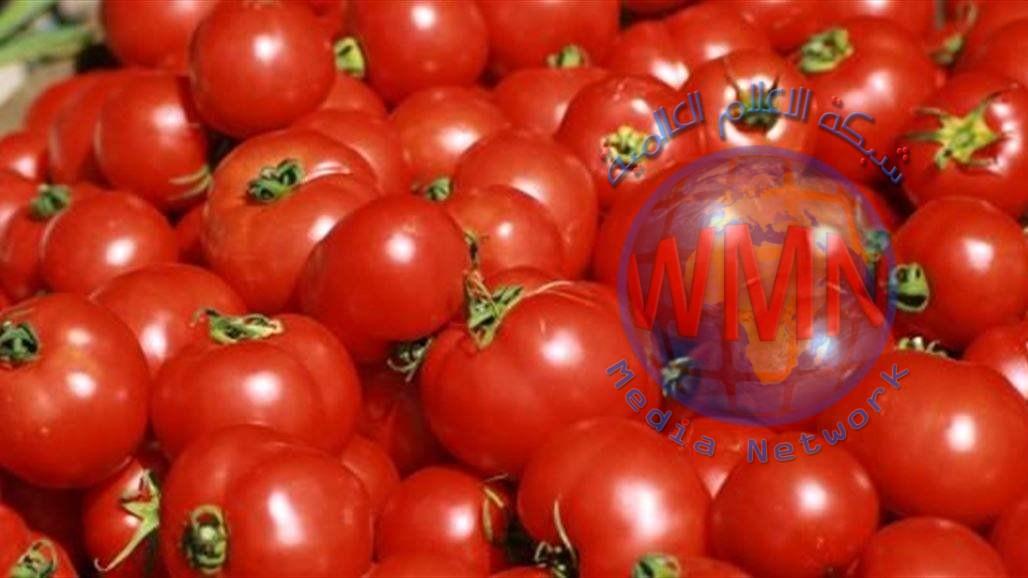 الزراعة تمنع أستيراد محصول الطماطم