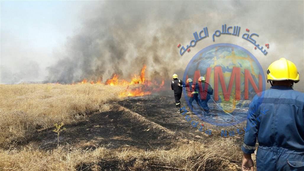 إخماد حريق اندلع بمساحة ١٠ دوانم بمزرعة حنطة في العظيم