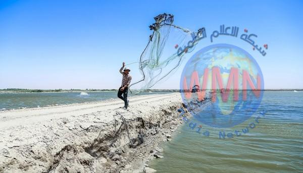 العتبة الحسينية تشرع بتنفيذ مشروع كبير لتقويض استيراد الاسماك