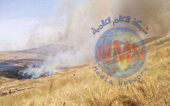 مجلس نينوى: داعش له اليد الطولى بحرق 80 الف دونم مزروعة بالحنطة والشعير