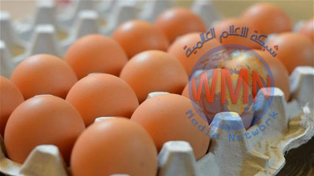 العطار: خفض أسعار البيض يتناسب مع الدخل النقدي للمواطن