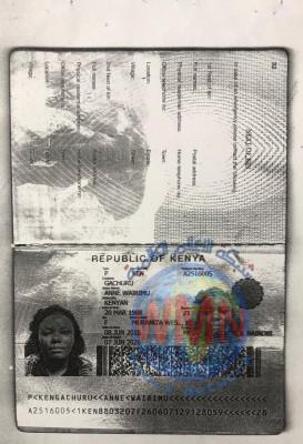 مسافرة كينية تثير الفوضى في مطار البصرة