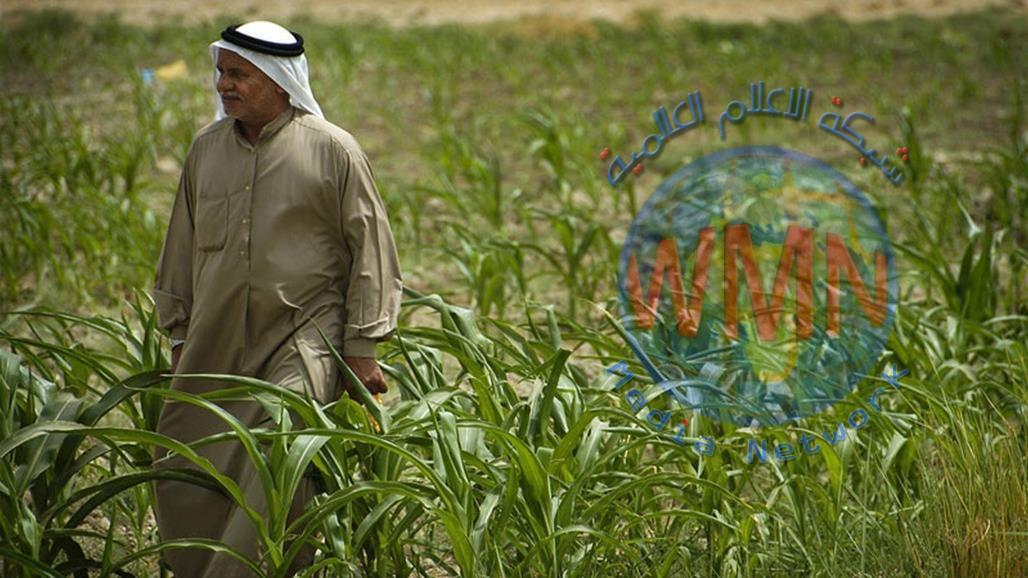 الزراعة تؤكد استمرار منع استيراد 18 مادة لوفرة المنتج المحلي