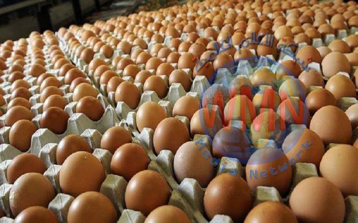 كربلاء تنتج نحو 18 مليون بيضة خلال شهر واحد