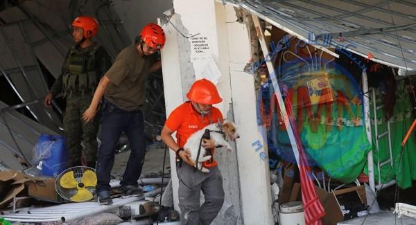 زلزال الفلبين ارتفاع ضحايا زلزال الفلبين إلى 5 قتلى و77 مصابا