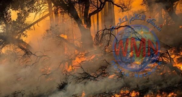حرائق كاليفورنيا تجبر السلطات الأميركية على إجلاء الآلاف