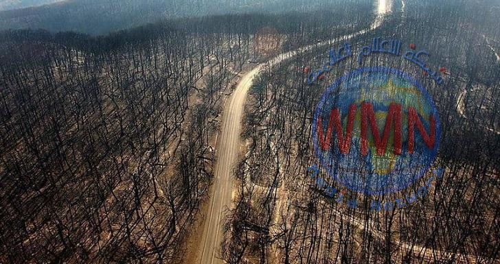 استراليا تعلن حالة طوارئ بسبب حرائق (كارثية)