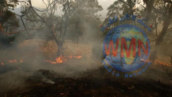 قتيلان وعشرات المصابين ودمار 100 منزل جراء حرائق لم تعرف أستراليا لها مثيلا