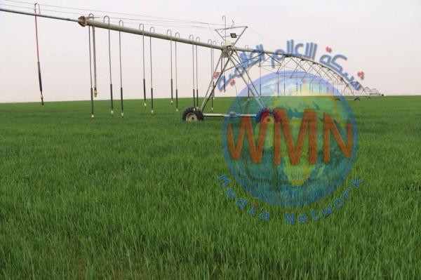 الزراعة النيابية: الاتفاق مع الوزارة على تخصيص تريليون دينار للمشاريع الزراعية
