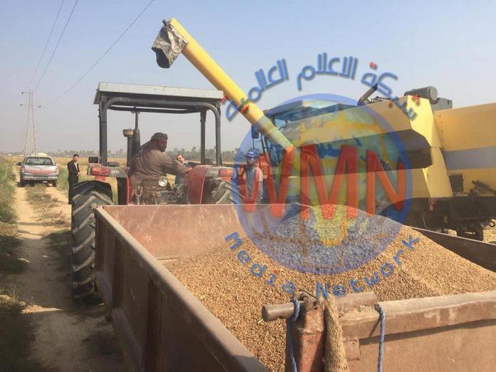 وزارة الزراعة: تسلمنا طلبات من شركات عالمية لشراء العنبر العراقي