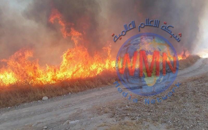 """داعش يحرق حقول الحنطة في حقول """"العوامرة"""" في ديالى"""