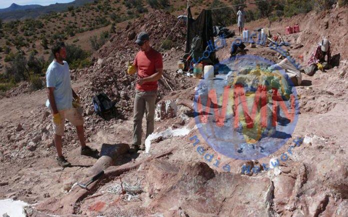الارجنتين: العثور على اضخم هيكل لديناصور في العالم