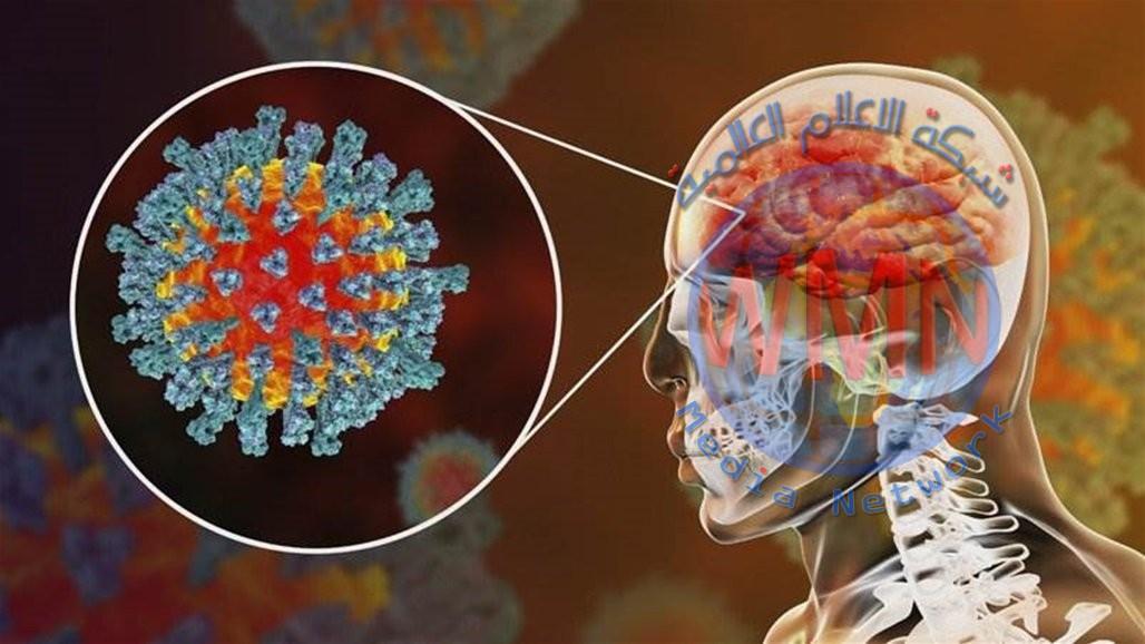 دراسة صادمة.. فيروس كورونا قادر على مهاجمة الدماغ