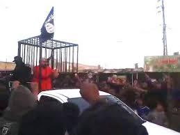 والي داعش في كركوك يكشف للقضاء سبب التجوال بأسرى البيشمركة في أقفاص