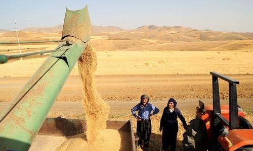 حكم قضائي في بغداد يلزم الحكومة بدفع مستحقات فلاحي الاقليم