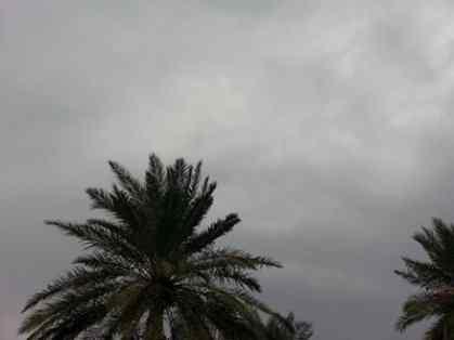 موجة أمطار جديدة قادمة للعراق بهذا الموعد