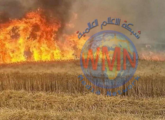 رئيس لجنة الزراعة والمياه النيابية العراق يتعرض إلى مؤامرة داخلية وخارجية من اجل تدمير اقتصاده