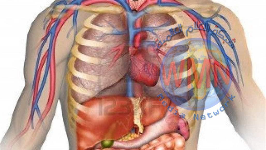 موقع اسباني: هذا ما يحدث لجسم الانسان بعد ثلاثين يوماً من الصيام