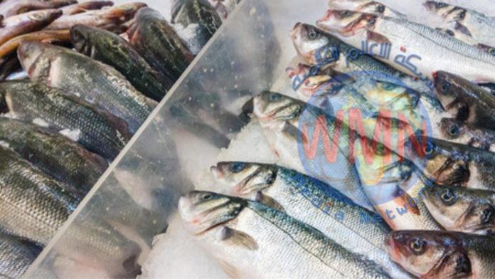 الزراعة تقرر منع استيراد الأسماك البحرية المجمدة