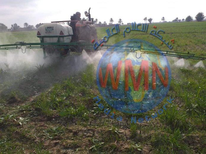 الزراعة النيابية: أيادي خفية وراء حرق المحاصيل لتدمير الاقتصاد