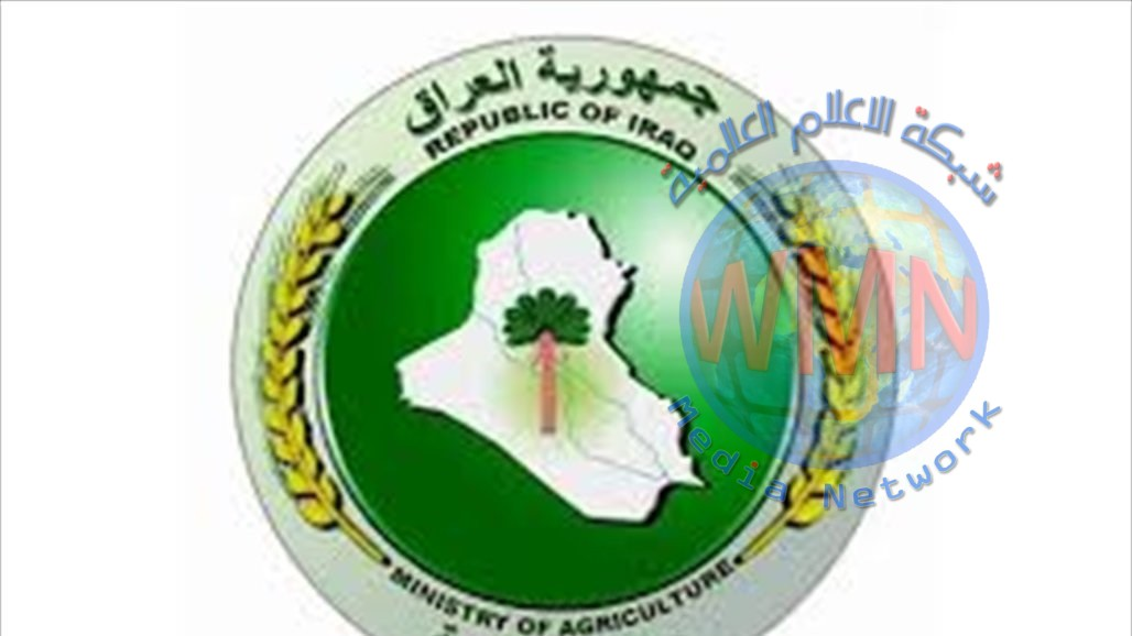 وزير الزراعة يوجه بتشكيل لجان لمتابعة مواقع تنقية وتعفير البذور
