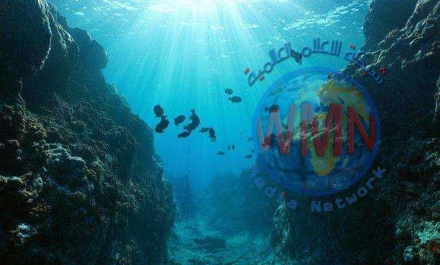 علماء يكتشفون زاحف بحري مخيف جاب المحيطات منذ 240 مليون سنة