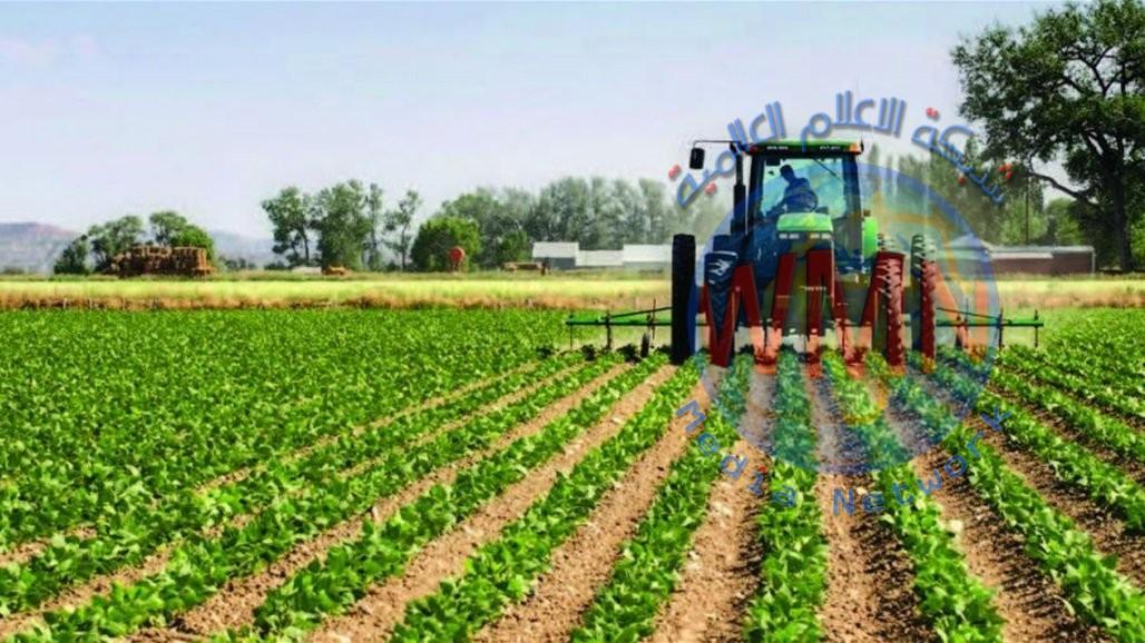 وزير الزراعة: حققنا 80% من السلة الغذائية للعراق من منتوجنا المحلي